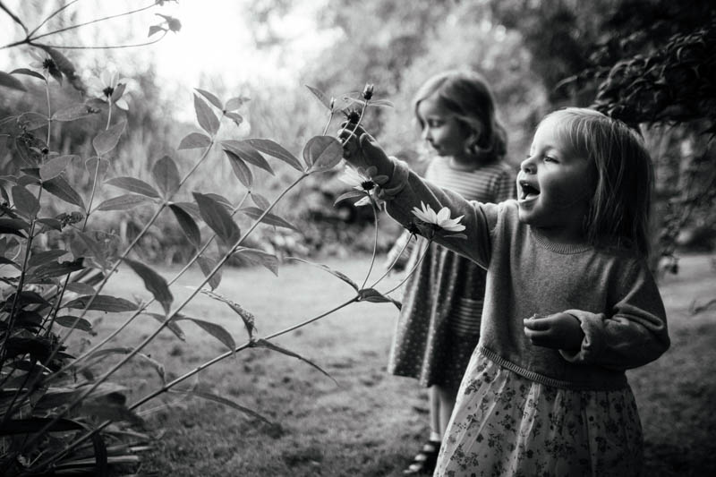 Little girl picks leaves off a plant